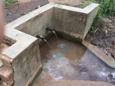 KCWCG spring protected with a concrete culvert in Kipsaina Swamp